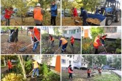 Осенняя уборка придомовых газонов